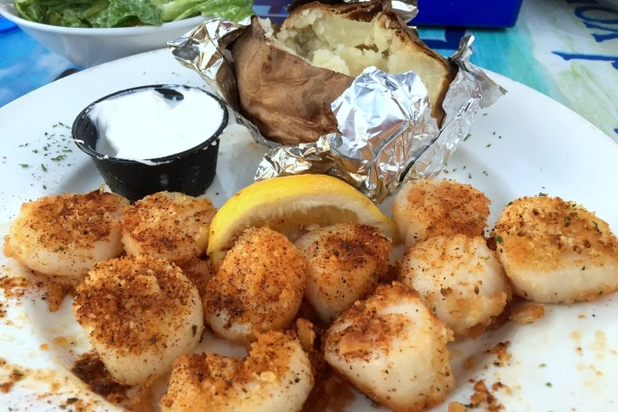 photo of baked scallops from Barefoot Bob's Beach Grill, Hull, MA (from hiddenboston.com)